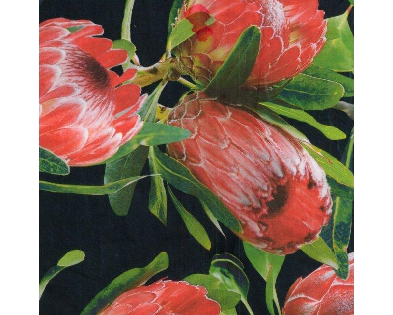 Protea Silky Satin