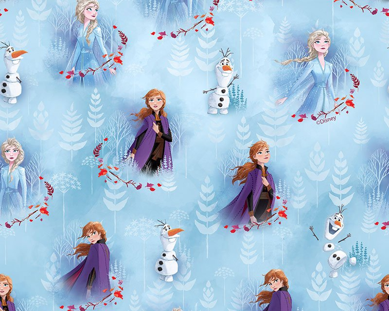 Little Johnny- Disney Frozen Anna, Elsa & Olaf Digital Cotton
