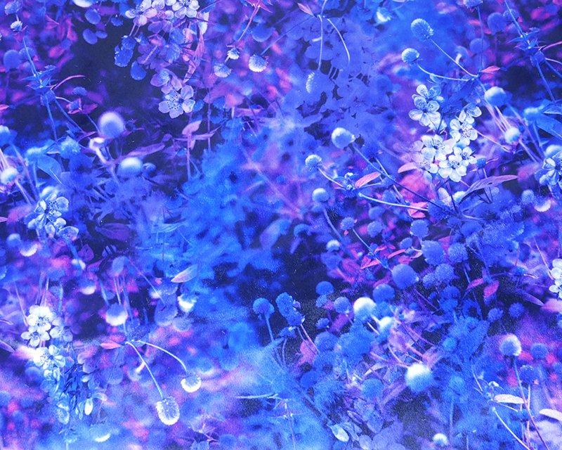 Blossom Digital Stretch Velour