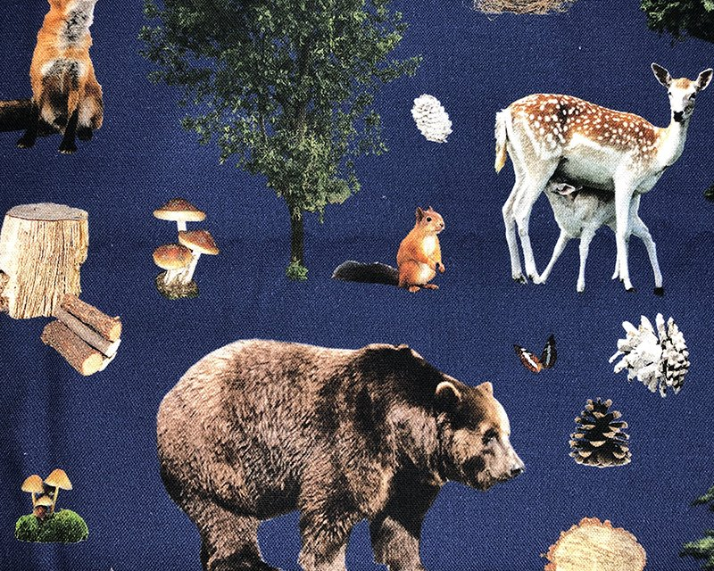 Forest Animal Canvas