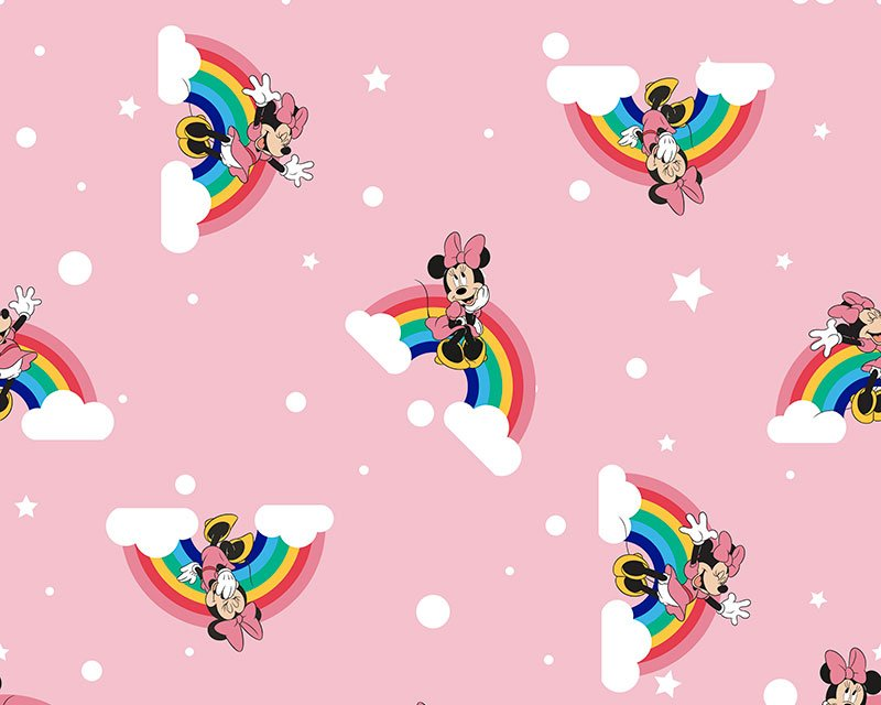 Little Johnny -  Disney Rainbow Minnie