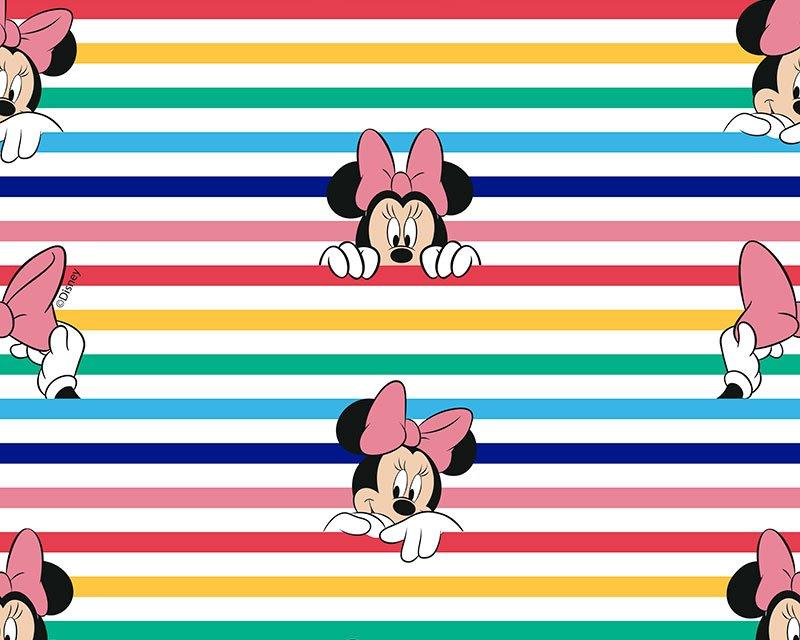 Little Johnny -  Disney Rainbow Stripe Minnie