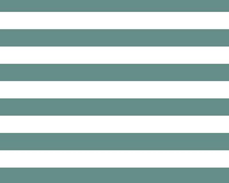 Wide Stripe Cotton Poplin